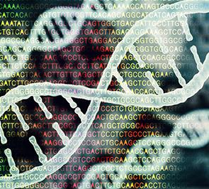 מדעי החיים ומדעי המחשב בהתמחות ביואינפורמטיקה