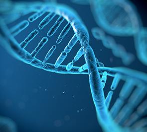 המסלול לגנטיקה