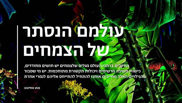 עולם הנסתר של הצמחים