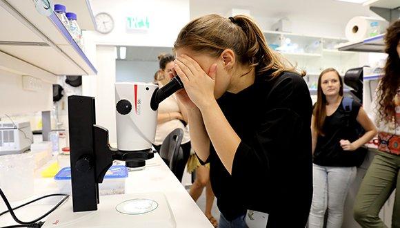 ומה עושים עם תואר בביולוגיה?